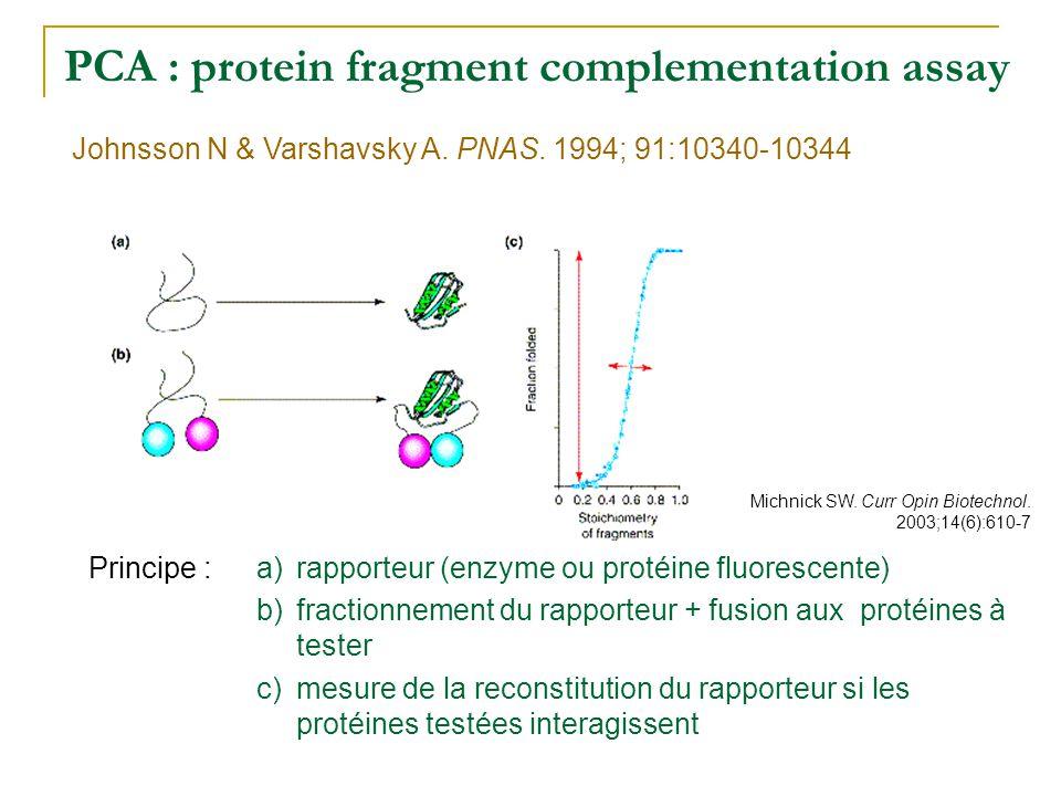 PCA : protein fragment complementation assay Application : applicable pour les protéines membranaires réponse très rapide Avantages : décalage temporel de la réponse au signal dexpression nombreux faux positifs : accumulation du substrat et du produit de la réaction enzymatique Inconvénients : identification des interactions étude des réseaux dinteraction