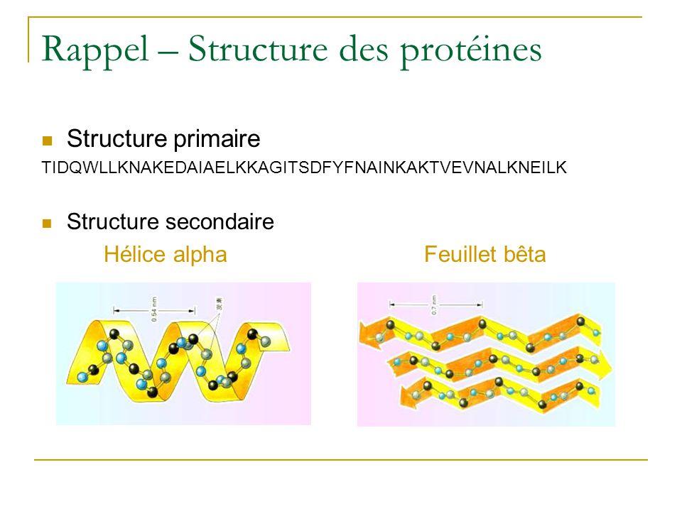 Rappel – Structure des protéines Structure primaire TIDQWLLKNAKEDAIAELKKAGITSDFYFNAINKAKTVEVNALKNEILK Structure secondaire Hélice alpha Feuillet bêta