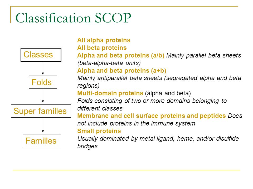 Classification SCOP Classes Folds Super familles Familles All alpha proteins All beta proteins Alpha and beta proteins (a/b) Mainly parallel beta shee