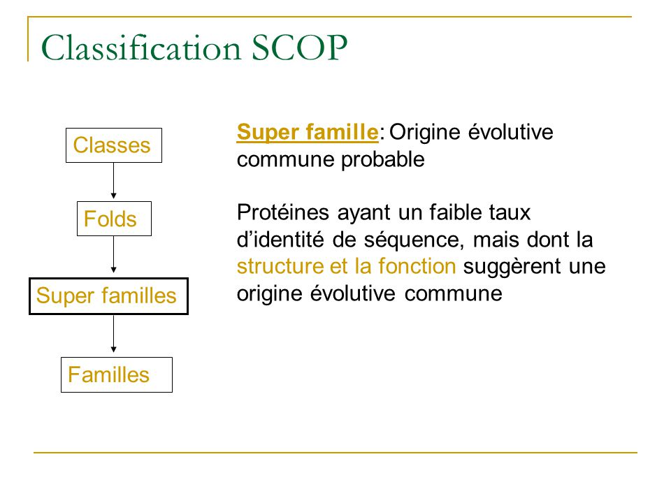 Classification SCOP Classes Folds Super familles Familles Super famille: Origine évolutive commune probable Protéines ayant un faible taux didentité d