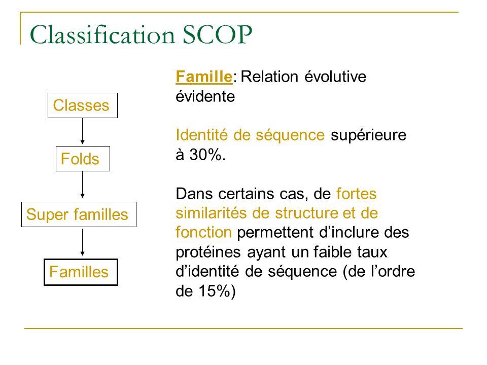 Classification SCOP Classes Folds Super familles Familles Famille: Relation évolutive évidente Identité de séquence supérieure à 30%. Dans certains ca