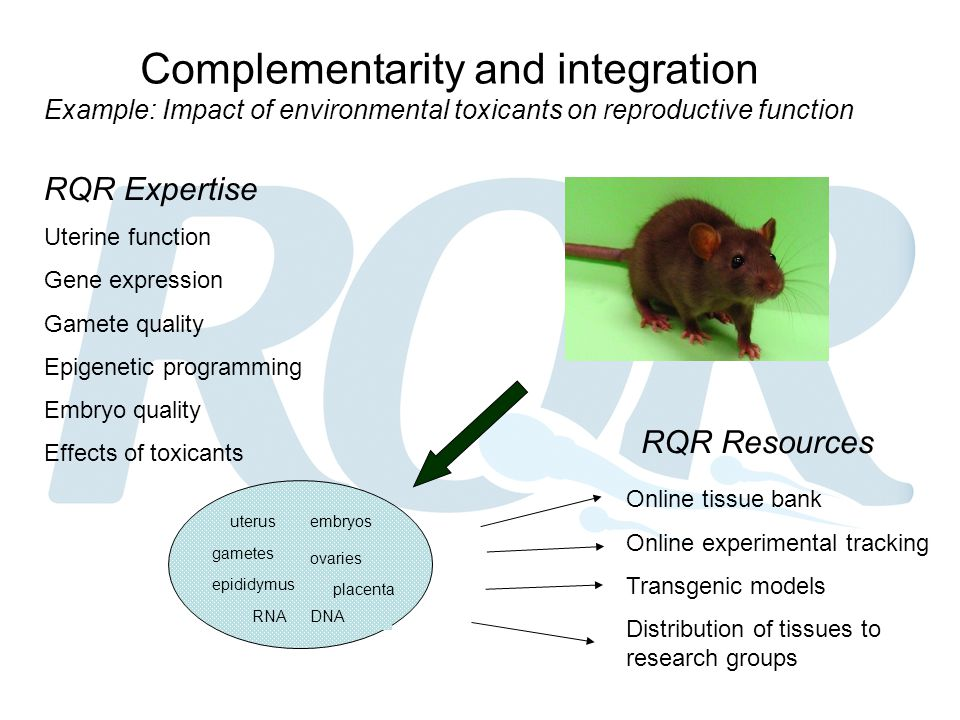 Complementarity and integration Example: Impact of environmental toxicants on reproductive function RQR Expertise Uterine function Gene expression Gam