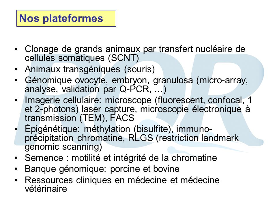 Clonage de grands animaux par transfert nucléaire de cellules somatiques (SCNT) Animaux transgéniques (souris) Génomique ovocyte, embryon, granulosa (micro-array, analyse, validation par Q-PCR, …) Imagerie cellulaire: microscope (fluorescent, confocal, 1 et 2-photons) laser capture, microscopie électronique à transmission (TEM), FACS Épigénétique: méthylation (bisulfite), immuno- précipitation chromatine, RLGS (restriction landmark genomic scanning) Semence : motilité et intégrité de la chromatine Banque génomique: porcine et bovine Ressources cliniques en médecine et médecine vétérinaire Nos plateformes
