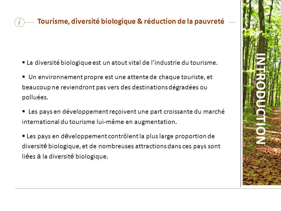 i Tourisme, diversité biologique et réduction de la pauvreté Les pays en développement reçoivent une part croissante du marché international du tourisme lui-même en augmentation.