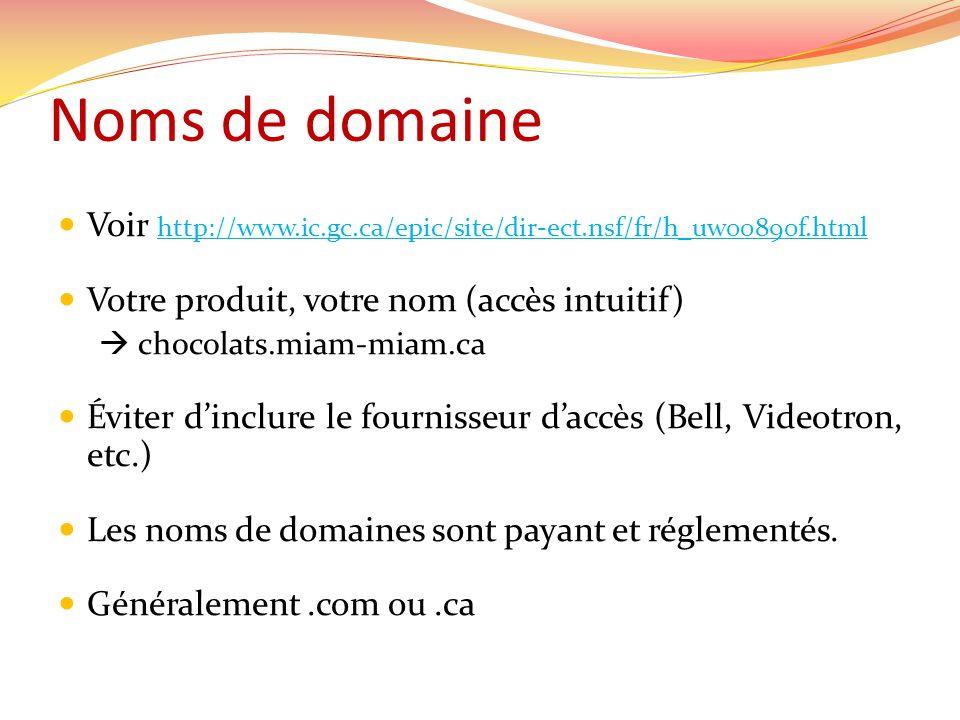 Noms de domaine Voir http://www.ic.gc.ca/epic/site/dir-ect.nsf/fr/h_uw00890f.html http://www.ic.gc.ca/epic/site/dir-ect.nsf/fr/h_uw00890f.html Votre produit, votre nom (accès intuitif) chocolats.miam-miam.ca Éviter dinclure le fournisseur daccès (Bell, Videotron, etc.) Les noms de domaines sont payant et réglementés.