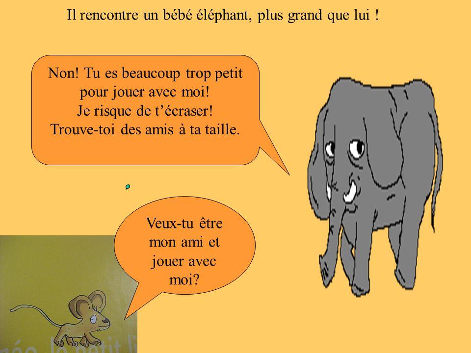 Il rencontre un bébé éléphant, plus grand que lui ! Veux-tu être mon ami et jouer avec moi? Non! Tu es beaucoup trop petit pour jouer avec moi! Je ris
