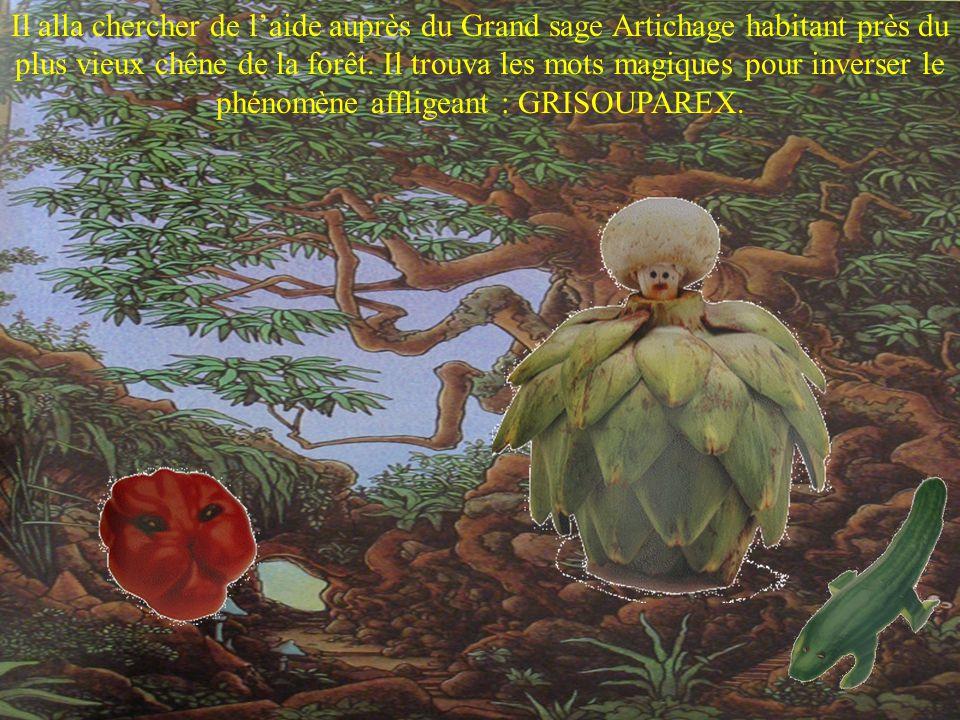 Il alla chercher de laide auprès du Grand sage Artichage habitant près du plus vieux chêne de la forêt.