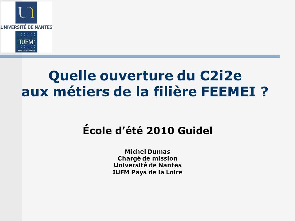 Quelle ouverture du C2i2e aux métiers de la filière FEEMEI .