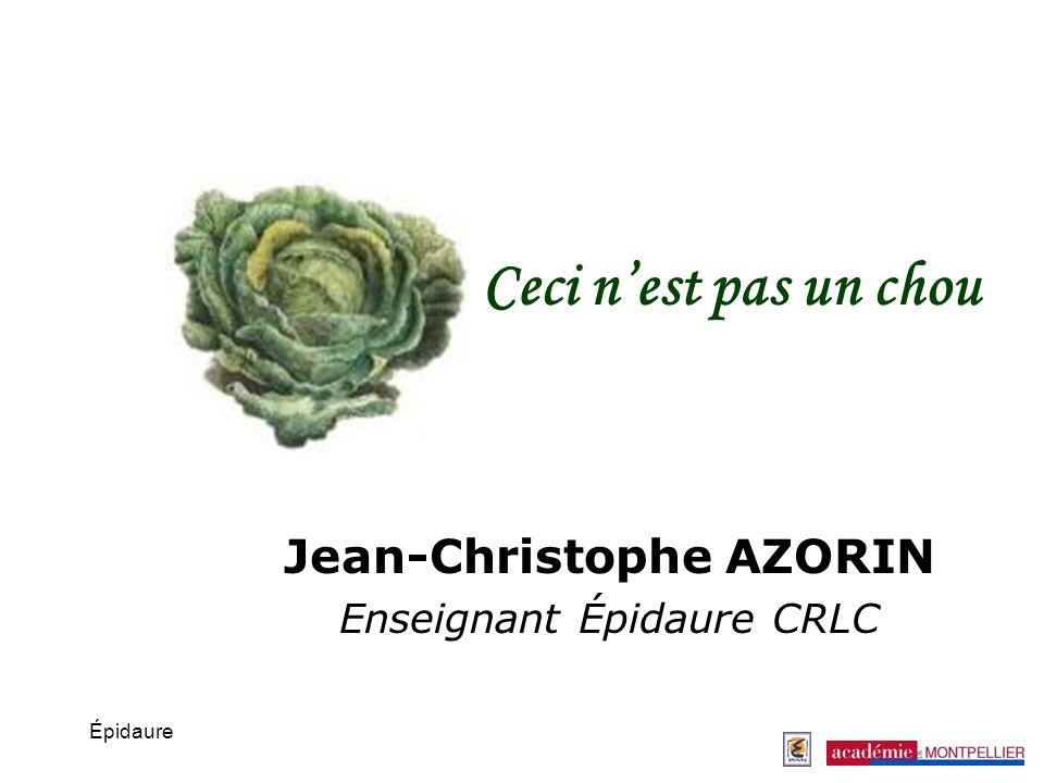 Épidaure Ceci nest pas un chou Jean-Christophe AZORIN Enseignant Épidaure CRLC