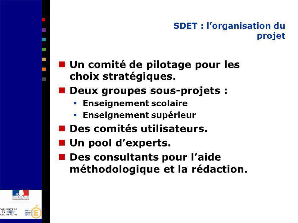 SDET : lorganisation du projet Un comité de pilotage pour les choix stratégiques.