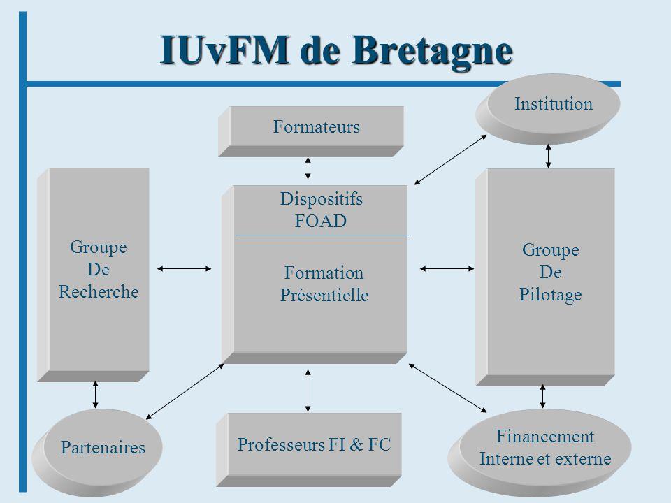 9 IUvFM de Bretagne Groupe De Recherche Groupe De Pilotage Professeurs FI & FC Partenaires Financement Interne et externe Formateurs Institution Dispo