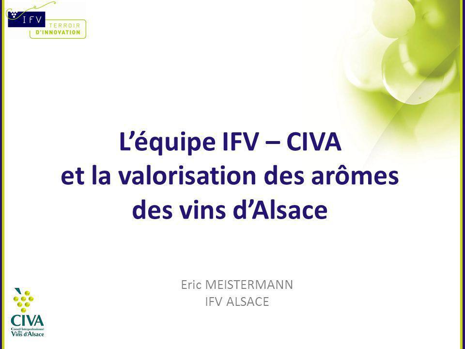 Léquipe IFV – CIVA et la valorisation des arômes des vins dAlsace Eric MEISTERMANN IFV ALSACE
