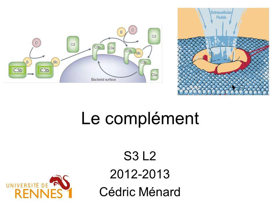 Le complément S3 L2 2012-2013 Cédric Ménard C3b