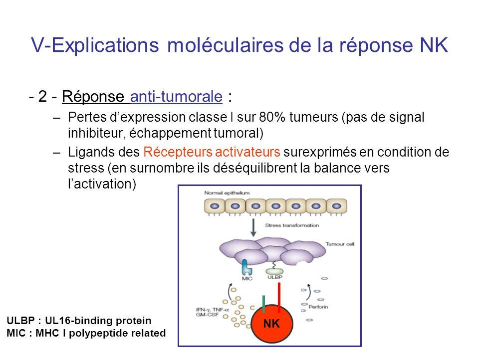 NK V-Explications moléculaires de la réponse NK - 2 - Réponse anti-tumorale : –Pertes dexpression classe I sur 80% tumeurs (pas de signal inhibiteur,