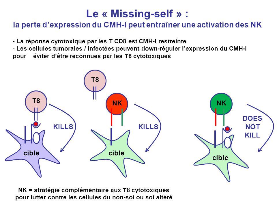 Le « Missing-self » : la perte dexpression du CMH-I peut entraîner une activation des NK - La réponse cytotoxique par les T CD8 est CMH-I restreinte -