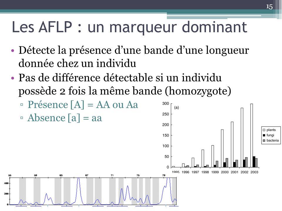 Les AFLP : un marqueur dominant Détecte la présence dune bande dune longueur donnée chez un individu Pas de différence détectable si un individu possè