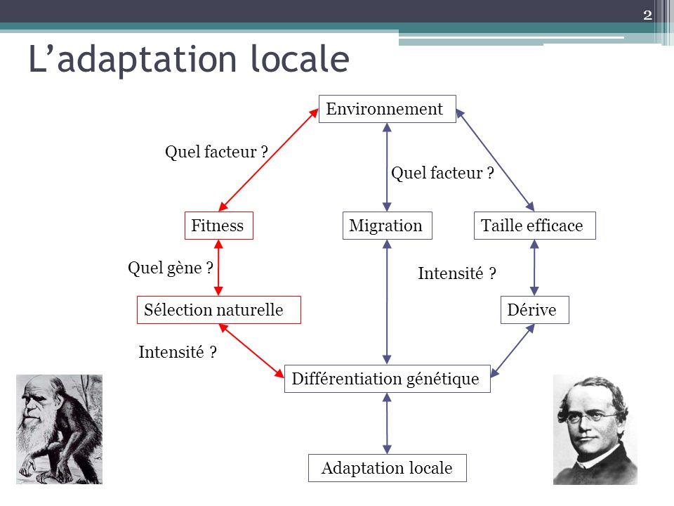 2 Environnement MigrationTaille efficace Adaptation locale Différentiation génétique DériveSélection naturelle Fitness Quel facteur ? Intensité ? Quel