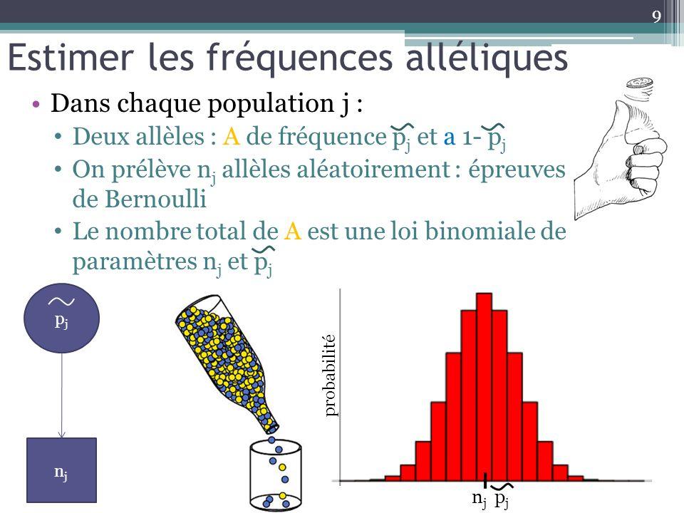 Estimer les fréquences alléliques Dans chaque population j : Deux allèles : A de fréquence p j et a 1- p j On prélève n j allèles aléatoirement : épre