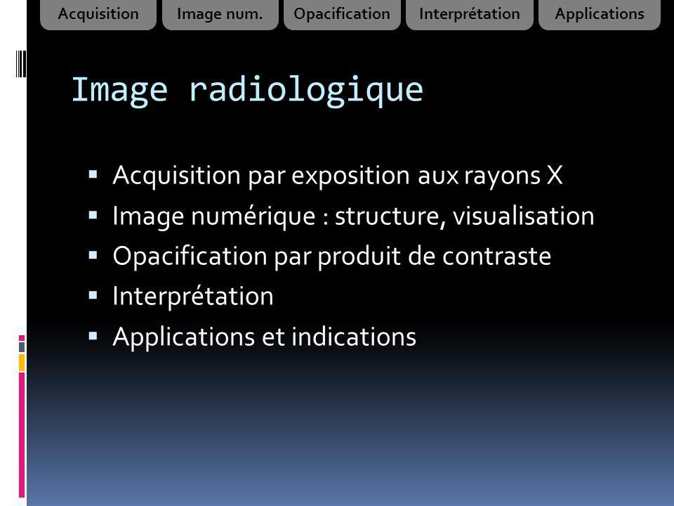 Image radiologique Acquisition par exposition aux rayons X Image numérique : structure, visualisation Opacification par produit de contraste Interprét