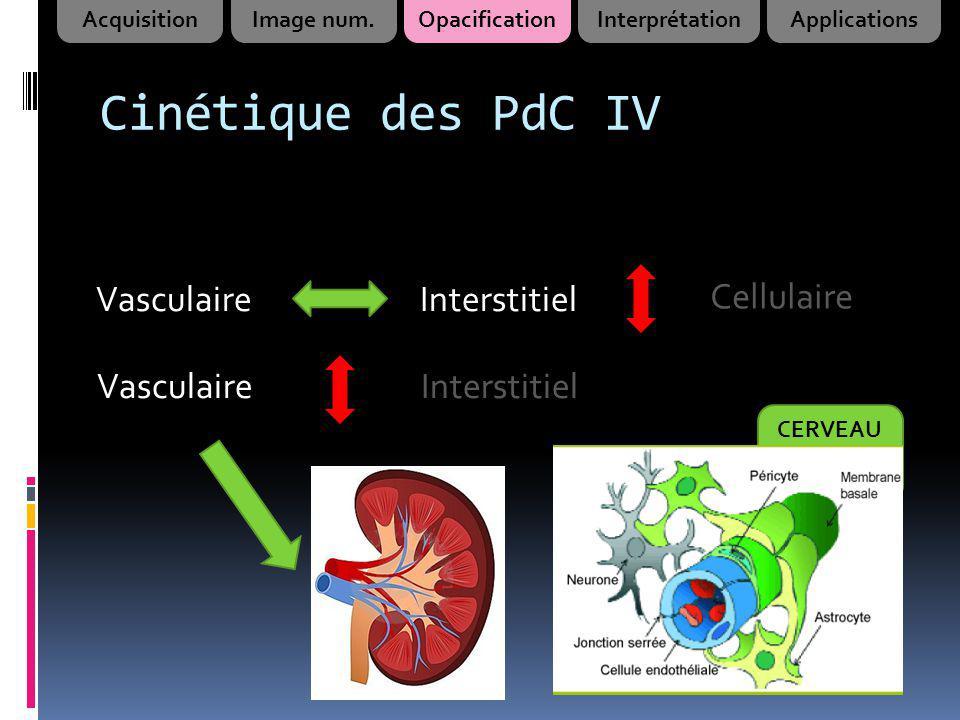 Cinétique des PdC IV VasculaireInterstitiel Cellulaire VasculaireInterstitiel CERVEAU AcquisitionImage num.OpacificationInterprétationApplications