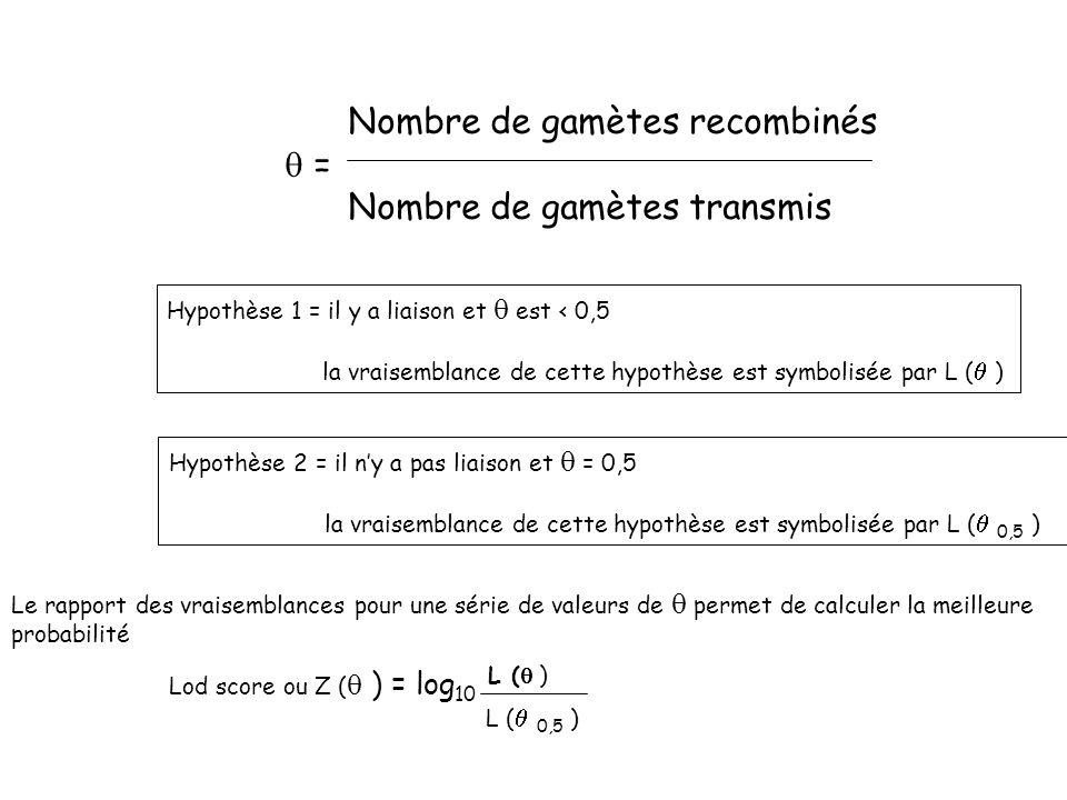 Nombre de gamètes recombinés = Nombre de gamètes transmis Hypothèse 1 = il y a liaison et est < 0,5 la vraisemblance de cette hypothèse est symbolisée