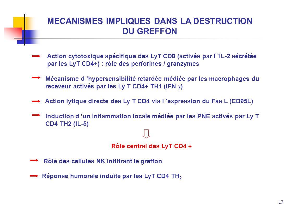 17 MECANISMES IMPLIQUES DANS LA DESTRUCTION DU GREFFON Action cytotoxique spécifique des LyT CD8 (activés par l IL-2 sécrétée par les LyT CD4+) : rôle