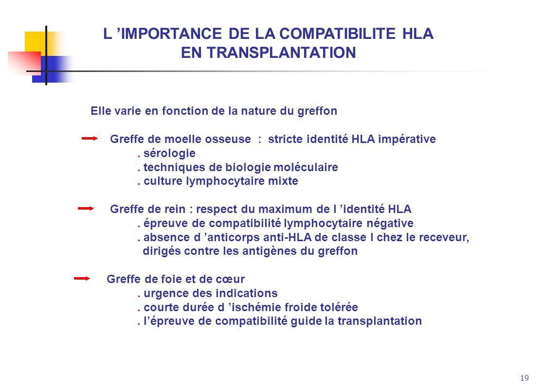 19 L IMPORTANCE DE LA COMPATIBILITE HLA EN TRANSPLANTATION Elle varie en fonction de la nature du greffon Greffe de moelle osseuse : stricte identité