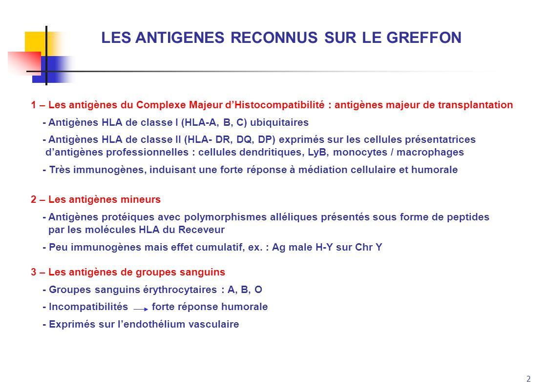 2 LES ANTIGENES RECONNUS SUR LE GREFFON 1 – Les antigènes du Complexe Majeur dHistocompatibilité : antigènes majeur de transplantation - Antigènes HLA