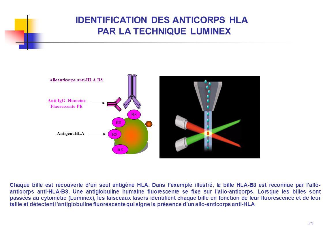 21 Alloanticorps anti-HLA B8 Anti-IgG Humaine Fluorescente PE B8 AntigèneHLA Chaque bille est recouverte dun seul antigène HLA. Dans lexemple illustré