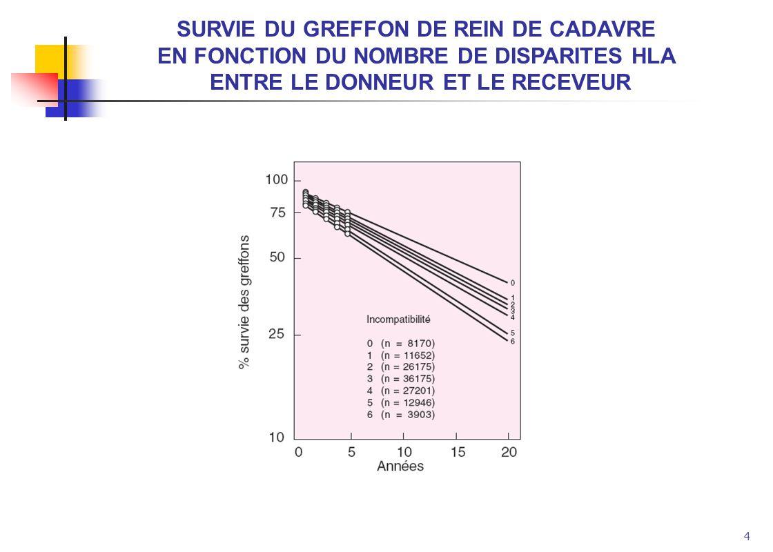 4 SURVIE DU GREFFON DE REIN DE CADAVRE EN FONCTION DU NOMBRE DE DISPARITES HLA ENTRE LE DONNEUR ET LE RECEVEUR