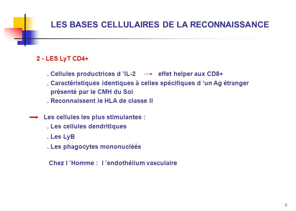 6 LES BASES CELLULAIRES DE LA RECONNAISSANCE 2 - LES LyT CD4+. Cellules productrices d IL-2 effet helper aux CD8+. Caractéristiques identiques à celle