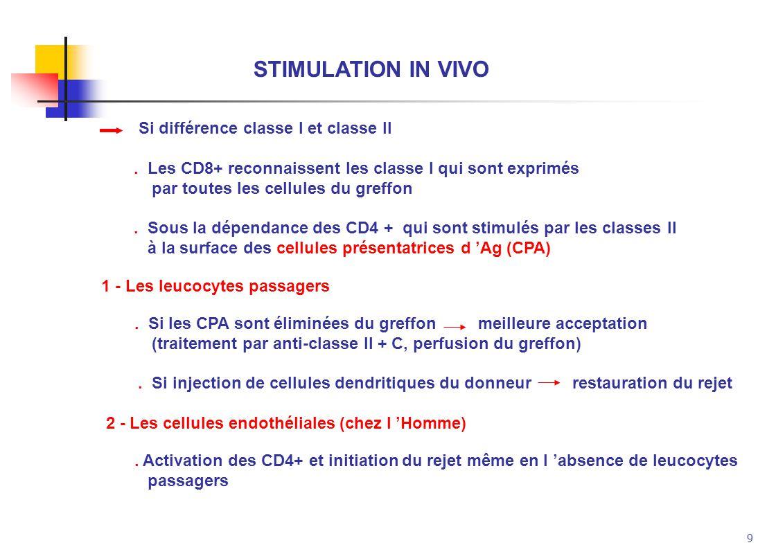 9 STIMULATION IN VIVO Si différence classe I et classe II. Les CD8+ reconnaissent les classe I qui sont exprimés par toutes les cellules du greffon. S