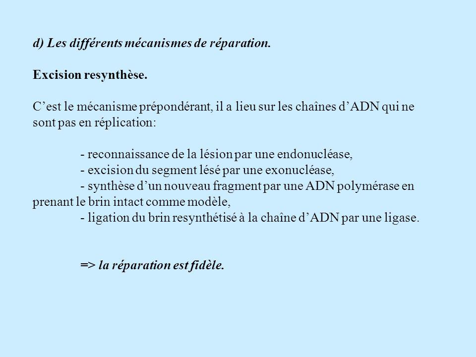 d) Les différents mécanismes de réparation.Excision resynthèse.