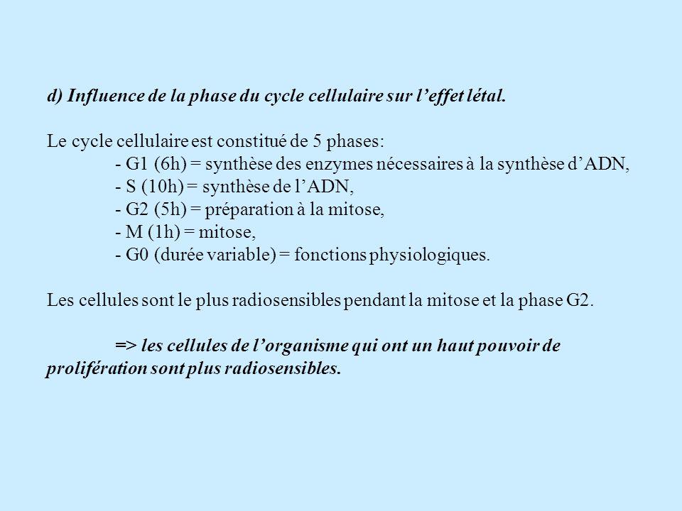 d) Influence de la phase du cycle cellulaire sur leffet létal.