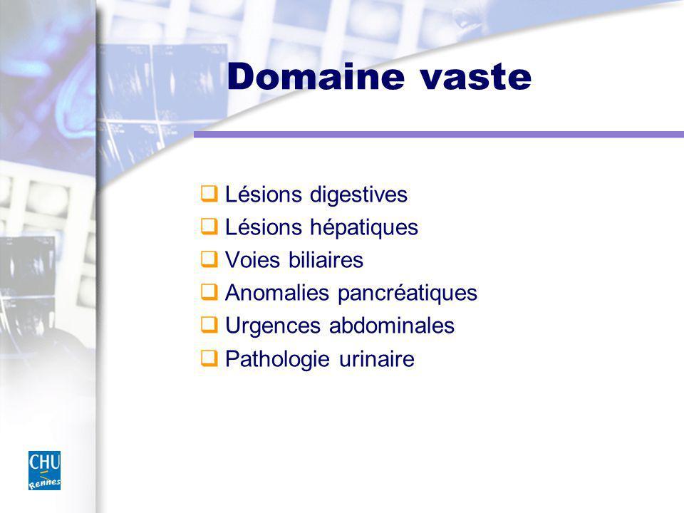 Domaine vaste Lésions digestives Lésions hépatiques Voies biliaires Anomalies pancréatiques Urgences abdominales Pathologie urinaire