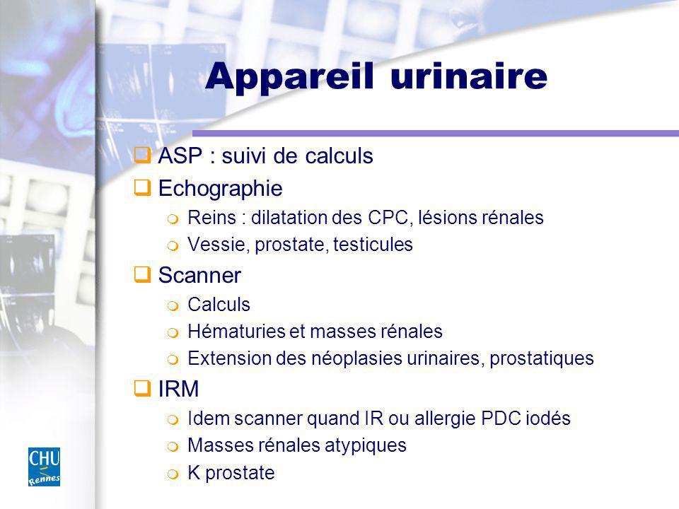 Appareil urinaire ASP : suivi de calculs Echographie Reins : dilatation des CPC, lésions rénales Vessie, prostate, testicules Scanner Calculs Hématuri