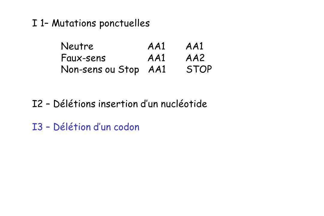 I 1– Mutations ponctuelles Neutre AA1 AA1 Faux-sens AA1 AA2 Non-sens ou Stop AA1 STOP I2 – Délétions insertion dun nucléotide I3 – Délétion dun codon
