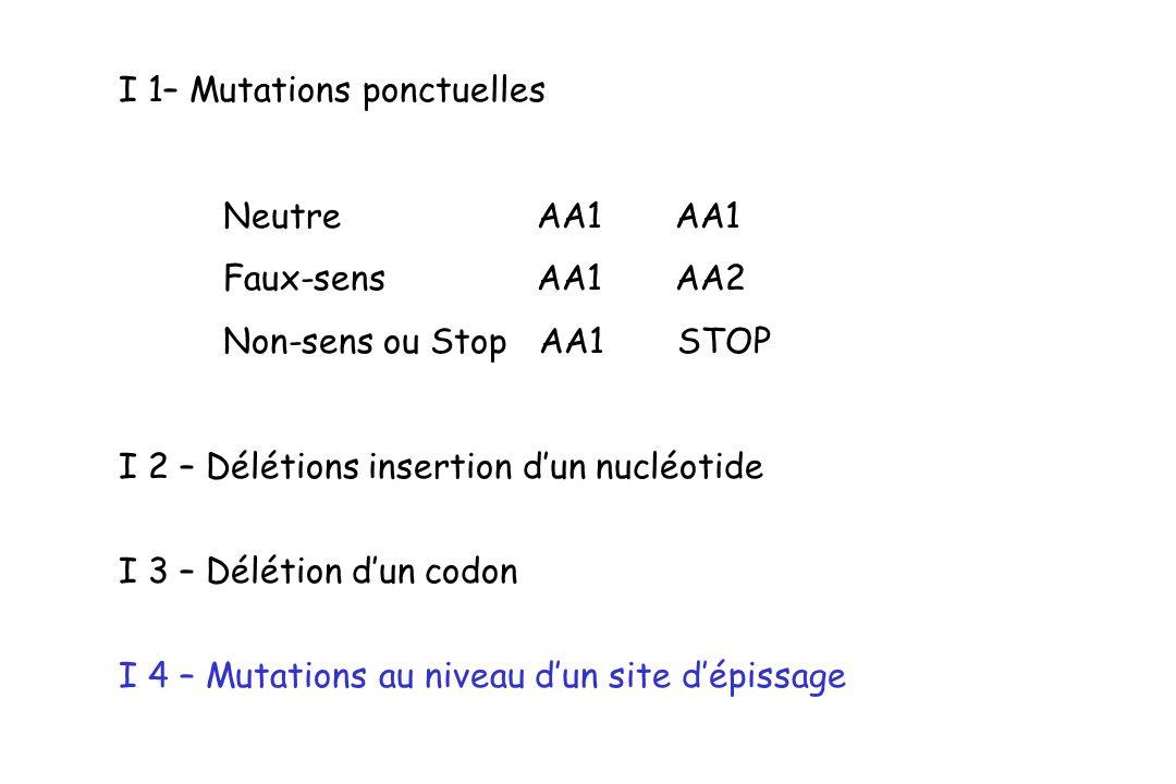 I 1– Mutations ponctuelles Neutre AA1 AA1 Faux-sens AA1 AA2 Non-sens ou Stop AA1 STOP I 2 – Délétions insertion dun nucléotide I 3 – Délétion dun codo