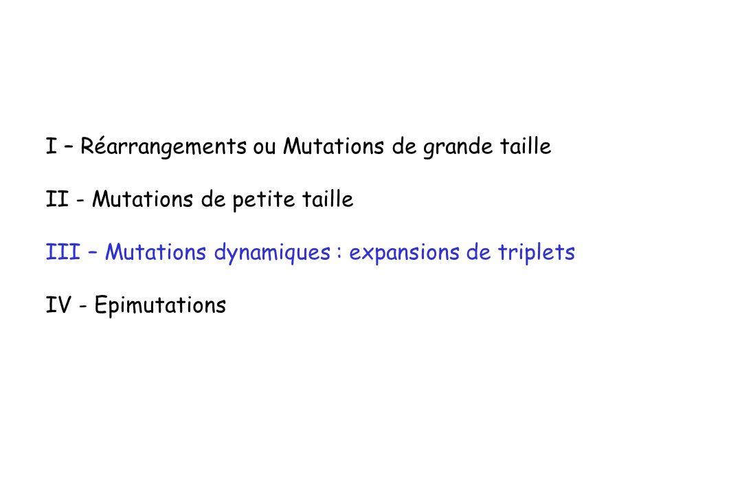 I – Réarrangements ou Mutations de grande taille II - Mutations de petite taille III – Mutations dynamiques : expansions de triplets IV - Epimutations