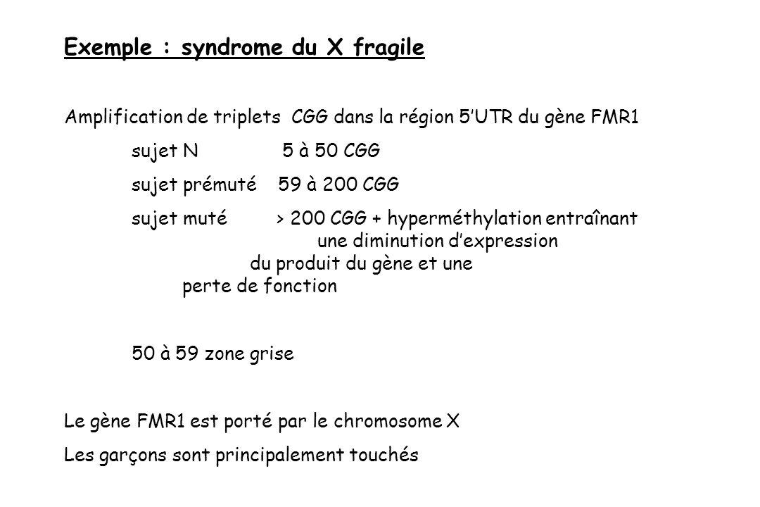 Exemple : syndrome du X fragile Amplification de triplets CGG dans la région 5UTR du gène FMR1 sujet N 5 à 50 CGG sujet prémuté 59 à 200 CGG sujet mut