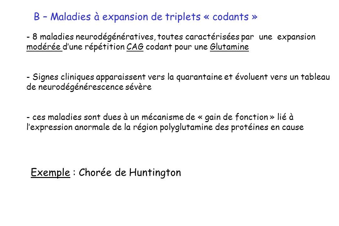 B – Maladies à expansion de triplets « codants » Exemple : Chorée de Huntington - 8 maladies neurodégénératives, toutes caractérisées par une expansio