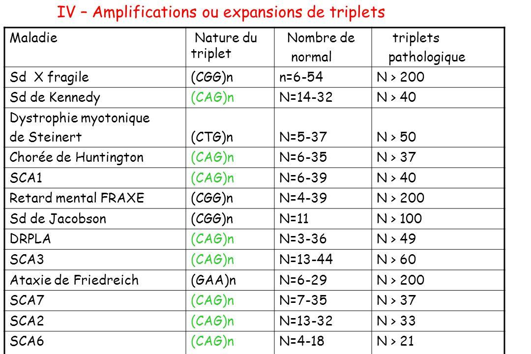 IV – Amplifications ou expansions de triplets Maladie Nature du triplet Nombre de normal triplets pathologique Sd X fragile(CGG)nn=6-54N > 200 Sd de K