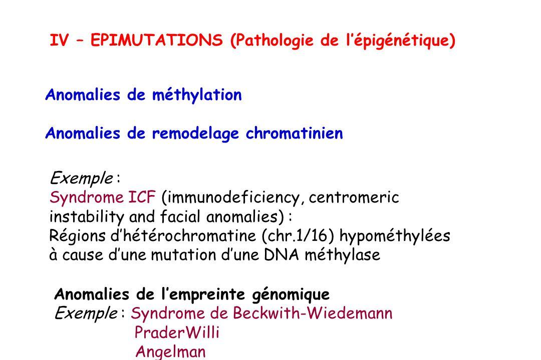 IV – EPIMUTATIONS (Pathologie de lépigénétique) Anomalies de méthylation Anomalies de remodelage chromatinien Exemple : Syndrome ICF (immunodeficiency