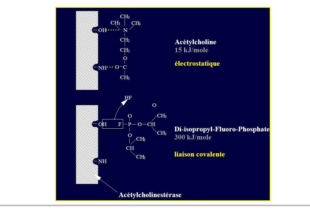 PCEM1 – Biophysique- 6 - OH NH OH CH 3 3 3 2 2 N O OC 3 O F HF PO O O CH 3 3 3 3 NH Acétylcholinestérase Acétylcholine 15 kJ/mole électrostatique Di-isopropyl-Fluoro-Phosphate 300 kJ/mole liaison covalente