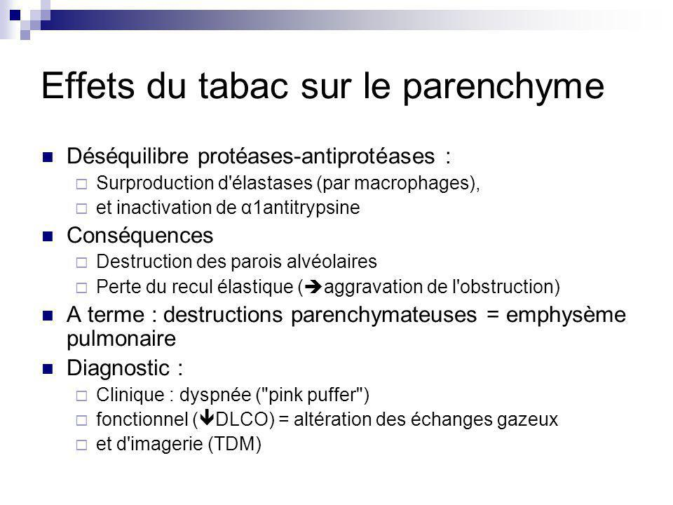 Effets du tabac sur le parenchyme Déséquilibre protéases-antiprotéases : Surproduction d élastases (par macrophages), et inactivation de α1antitrypsine Conséquences Destruction des parois alvéolaires Perte du recul élastique ( aggravation de l obstruction) A terme : destructions parenchymateuses = emphysème pulmonaire Diagnostic : Clinique : dyspnée ( pink puffer ) fonctionnel ( DLCO) = altération des échanges gazeux et d imagerie (TDM)