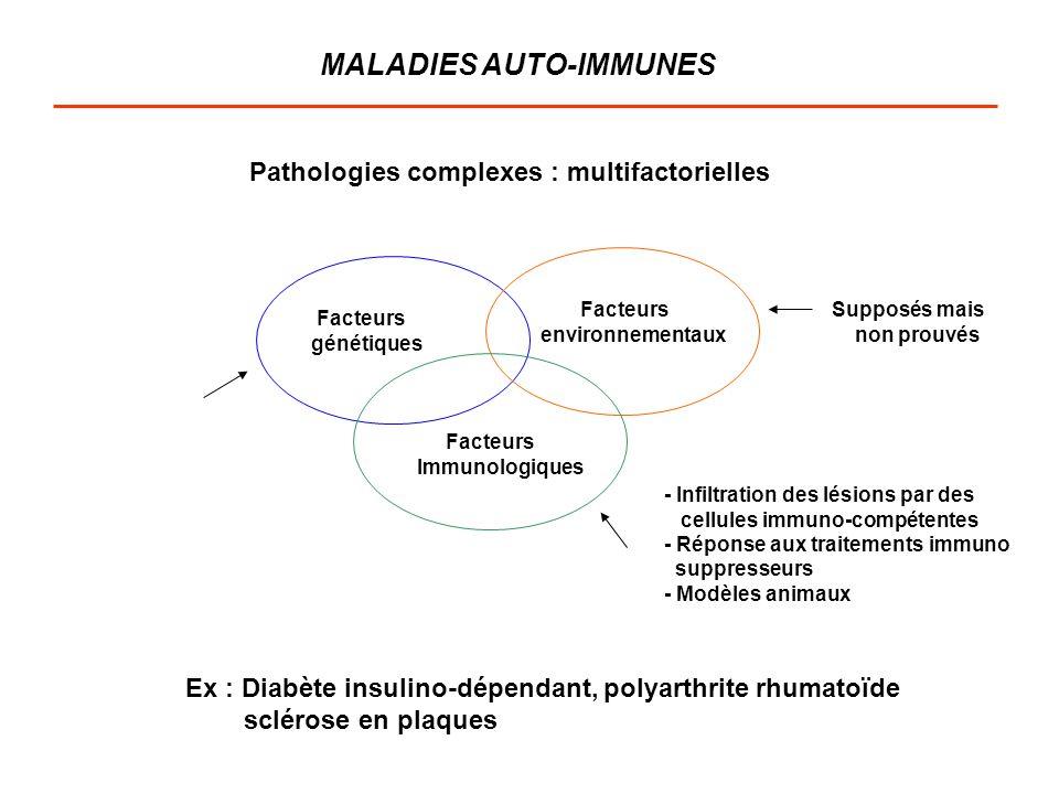 MALADIES AUTO-IMMUNES Pathologies complexes : multifactorielles Facteurs génétiques Facteurs environnementaux Facteurs Immunologiques Supposés mais no