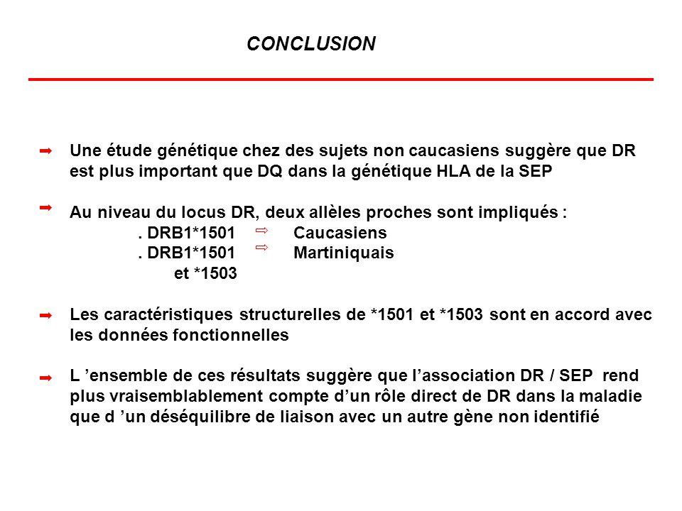 Une étude génétique chez des sujets non caucasiens suggère que DR est plus important que DQ dans la génétique HLA de la SEP Au niveau du locus DR, deu