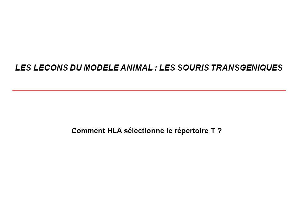 LES LECONS DU MODELE ANIMAL : LES SOURIS TRANSGENIQUES Comment HLA sélectionne le répertoire T ?