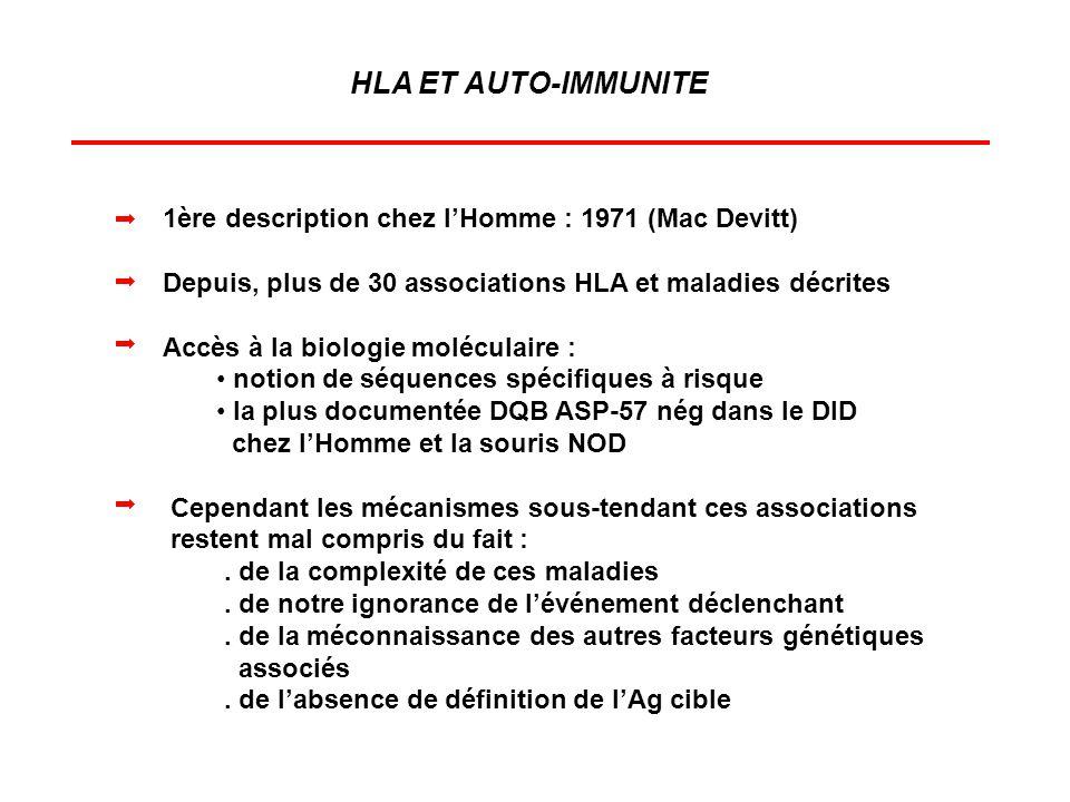 HLA ET AUTO-IMMUNITE 1ère description chez lHomme : 1971 (Mac Devitt) Depuis, plus de 30 associations HLA et maladies décrites Accès à la biologie mol