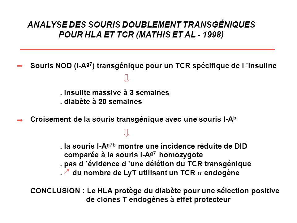 ANALYSE DES SOURIS DOUBLEMENT TRANSGÉNIQUES POUR HLA ET TCR (MATHIS ET AL - 1998) Souris NOD (I-A g7 ) transgénique pour un TCR spécifique de l insuli